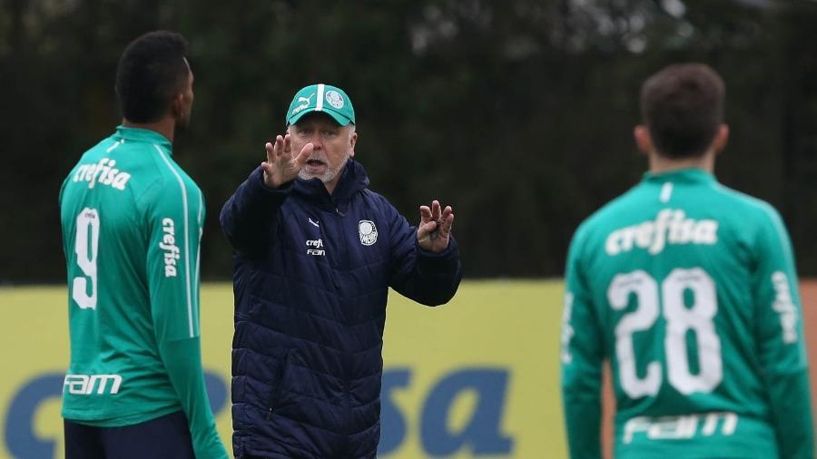 Mano indica mudanças no Palmeiras para enfrentar o Avaí