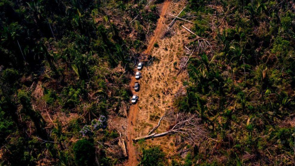Secretários de Meio Ambiente de Mato Grosso e mais 6 estados se unem contra desmatamento ilegal